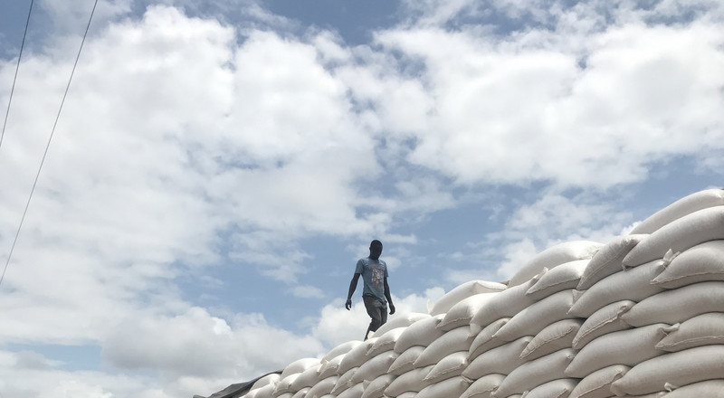 Residents scramble for maize after a Lorry ferrying the cereal fell (Video)