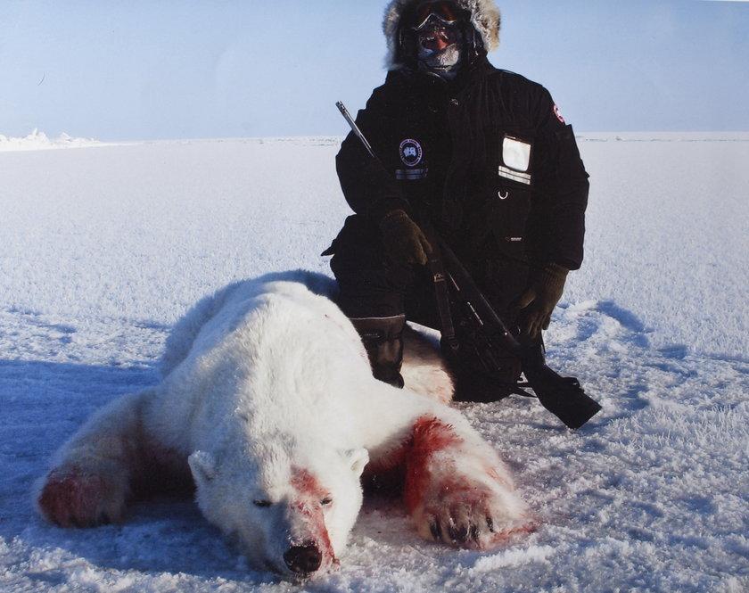 Myśliwy i zastrzelony niedźwiedź polarny