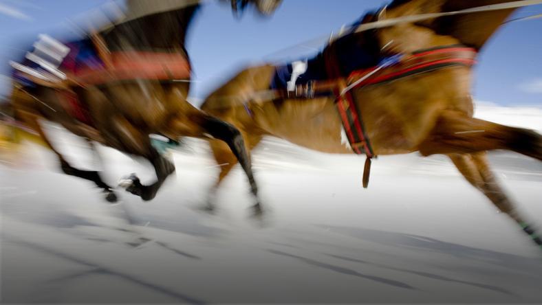 783373719ff57 Skiring i plenerowe wycieczki: jeździectwo zimą - Forbes