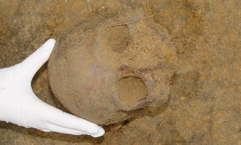 Makabryczne odkrycie na cmentarzu w Nowym Porcie