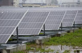 Co dalej z zieloną energią?