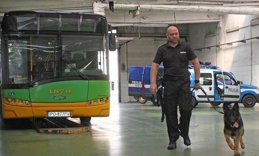 Policyjne psy w autobusach MPK