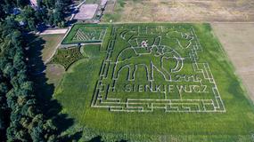 Od niedzieli - nowy kukurydziany labirynt w Kurozwękach