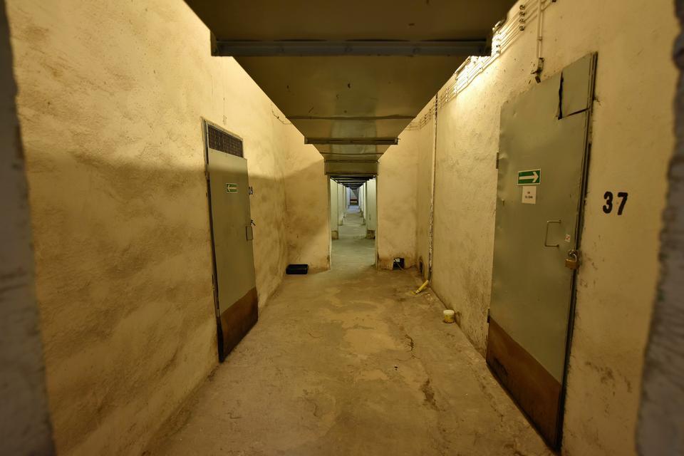 To jeden z korytarzy na poziomie -2. Mieszkają na nim pałacowe koty. Z kolei na 43. piętrze gmachu gniazdo założyły sokoły wędrowne, na dachu Teatru Studio założono pasiekę