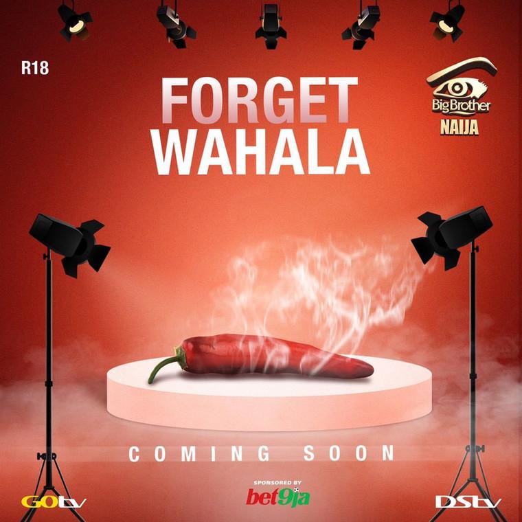 Big Brother Naija season 4 has been rumoured to be themed 'Forget Wahala.' [Twitter/Big Brother Naija]