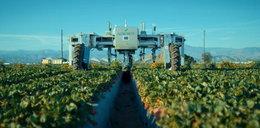 Roboty zastąpią rolników?