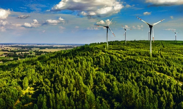 Trybunał Konstytucyjny zbada, czy Sejm mógł przywrócić z mocą wsteczną niekorzystne dla gmin zasady opodatkowania farm wiatrowych.
