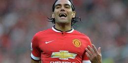Papuga gwiazdora Manchesteru komentuje jego gole!