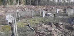 Proboszcz zdewastował cmentarz? Usłyszał zarzuty