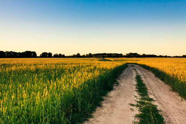Komercyjne przedsięwzięcia w dziedzinie mieszkaniówki dotąd nie leżały w domenie rolniczego ośrodka