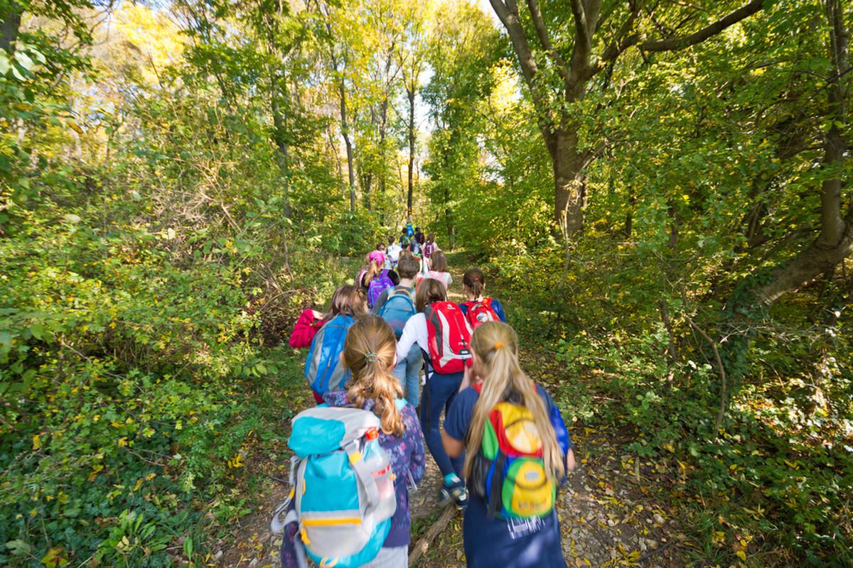 Crnogorski djaci sve cesce dolaze u Srbiju na ekskurzije, a ovo je RAZLOG
