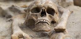 Robotnicy natrafili na ludzkie szczątki