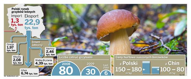 Polski rynek grzybów leśnych