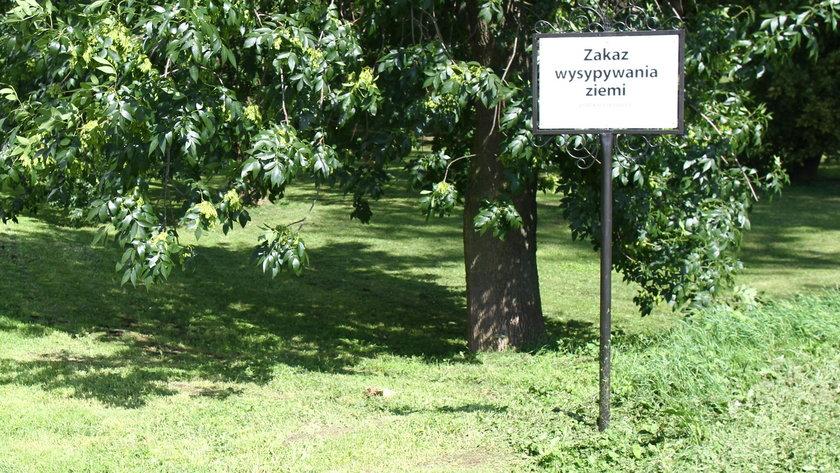 Park Olszynki