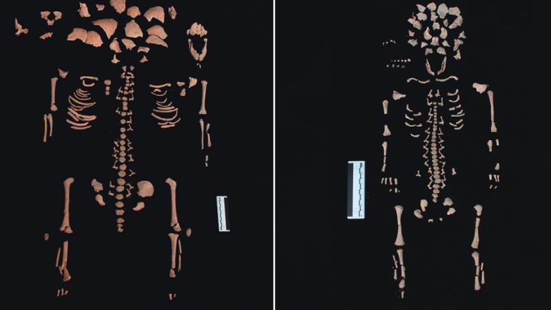 Szczątki, które znaleziono w grobie