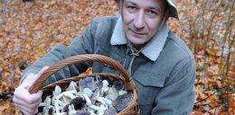Lasy pełne grzybów. Gdzie dokładnie?