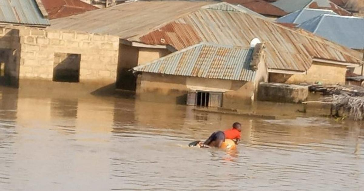 Flooding displaces 40,000 persons in Borno – UN - Pulse Nigeria