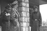 Logori, Bordeli, Nacisti, Hajnrih Himler
