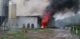 Wielki pożar na Pomorzu. Ogromne straty finansowe