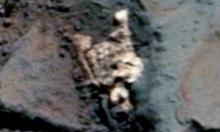 Niektórzy są przekonani, że na Marsie jest życie