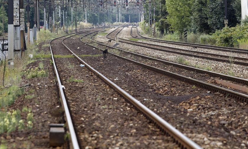 Mężczyzna zginął pod kołami pociągu.
