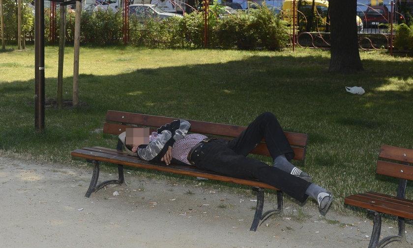 Menel śpiący pod kamerą monitoringu miejskiego w Parku Staszica we Wrocławiu