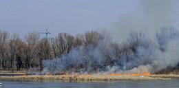 Pożar przy moście Świętokrzyskim!