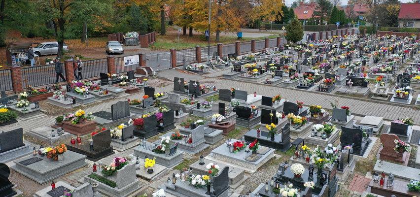 Planujesz za życia kupić miejsce na cmentarzu? Zobacz, ile kosztuje i kto o tym decyduje