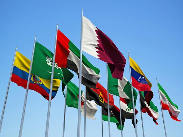 Produkcja ropy przez OPEC i kraje niezrzeszone w kartelu ma być niższa o ok. 1,8 mln baryłek ropy dziennie. Takie ustalenia dotyczą pierwszych sześciu miesięcy 2017 r.