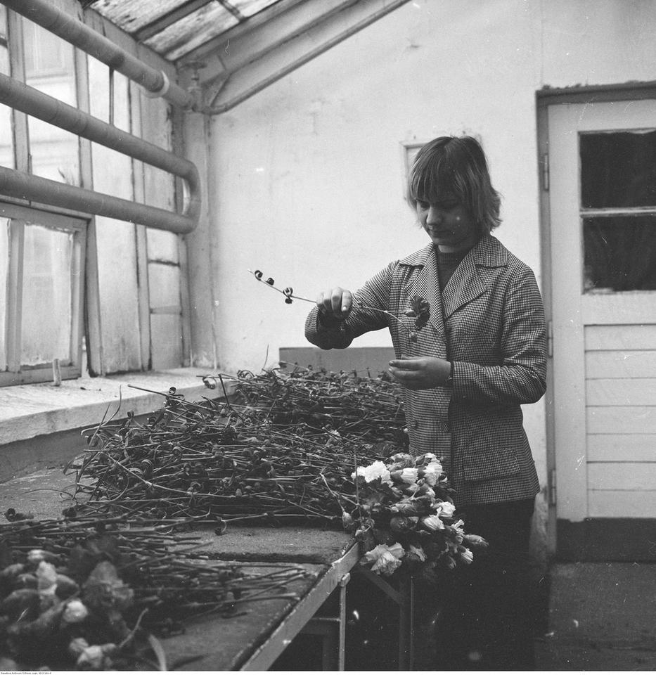 Dzień Kobiet w PRL-u - archiwalne zdjęcia