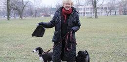 Fakt apeluje: Sprzątajcie po swoich psach!
