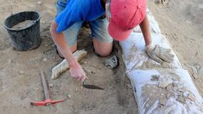 Przełomowe odkrycie archeologów na Starówce w Krośnie