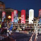 Veliko finale domaćeg boksa - SVE JE STALO U MAJSTORICU! Sombor ili Zvezda, odluka u nedelju u Smederevu