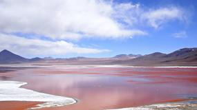 Laguna Colorada - niezwykłe jezioro w Boliwii