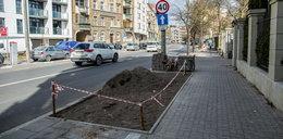 Będzie więcej zieleni na Mostowej