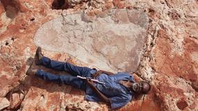 Największy na świecie odcisk stopy dinozaura znaleziony w Australii