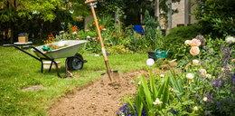 Jak urządzić ogród? Podpowiadamy!