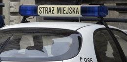 Łapownictwo w Straży Miejskiej