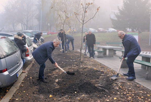 Vladan Kocić i Goran Vesić su sadili drveće