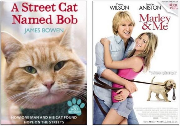Knjiga je već sad bestseler, a Bob se sprema da postane sledeća velika zvezda među kućnim ljubimcima, posle psa iz filma
