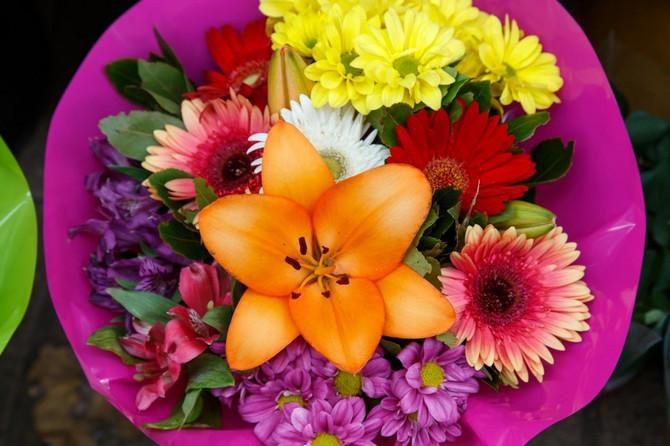Poljsko cveće za dom