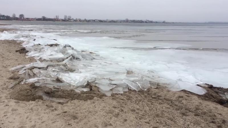Kra wbiła się w plażę, Półwysep Helski