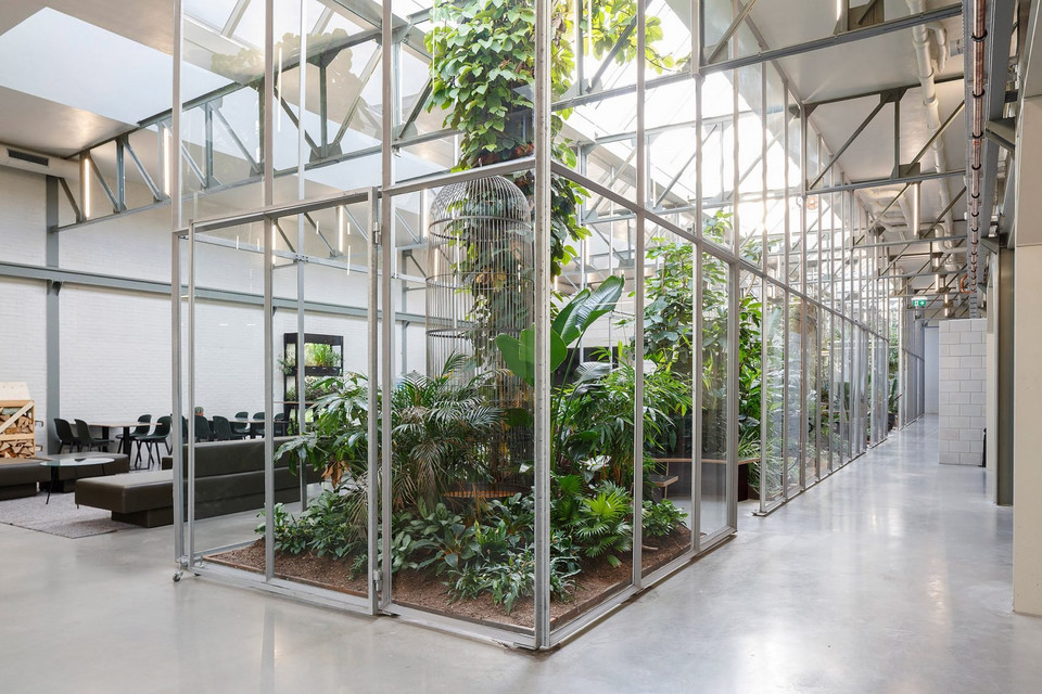 space-encounters-joolz-headquarters-amsterdam-interiors-netherlands-adaptive-reuse_dezeen_2364_col_3-1704x1136