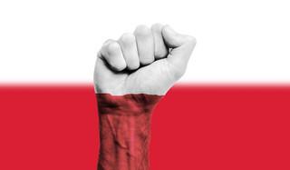 Jak chronić symbole narodowe, nie naruszając prawa do wolności wypowiedzi [OPINIA]