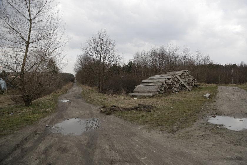 Droga między Gogolinem a Krapkowicami na Opolszczyźnie