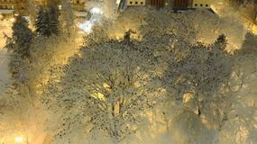 Amerykańska policja opublikowała zdjęcie, które zachwyciło tysiące ludzi
