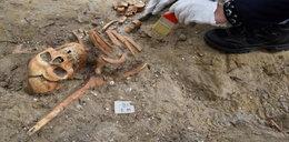 Niesamowite! Szczątki kolejnego polskiego żołnierza odkryte na Westerplatte!