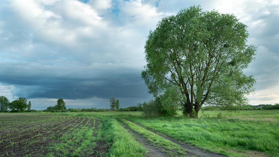 Prognoza pogody na czwartek 6 maja 2021 r.