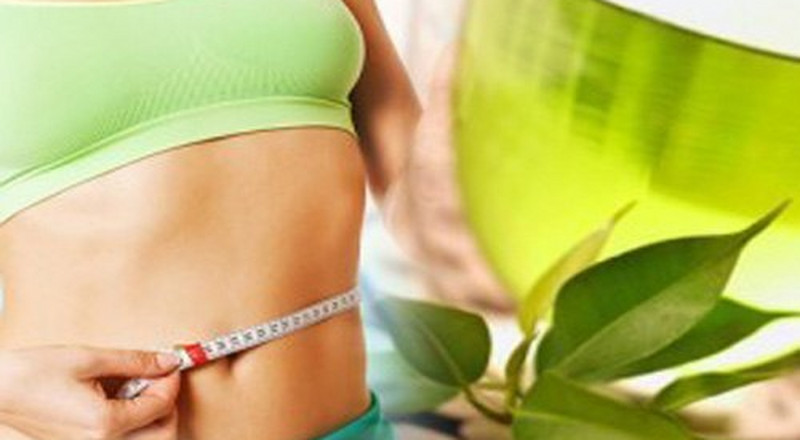 Green tea promotes weight loss, here's how
