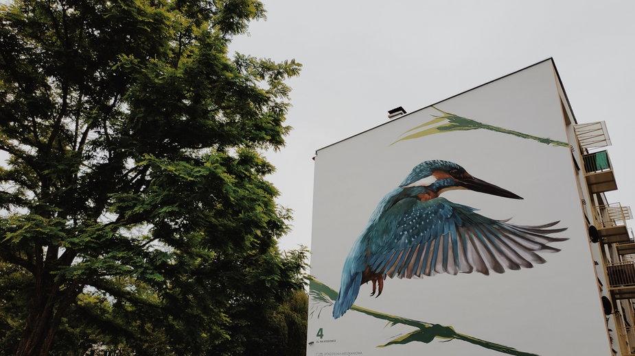Mural z zimorodkiem w Krakowie
